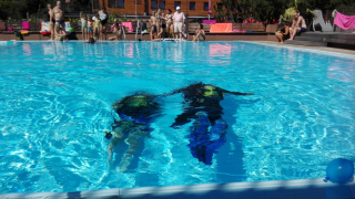 potápění s přístrojem pod vedením instruktorů